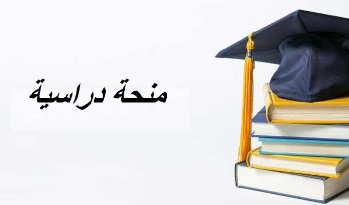 منحة دراسية
