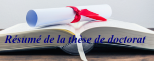 Summary of FALY Yacine doctoral thesis